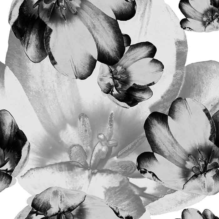 Brett_Design_Wallpaper_Tulips_ Black