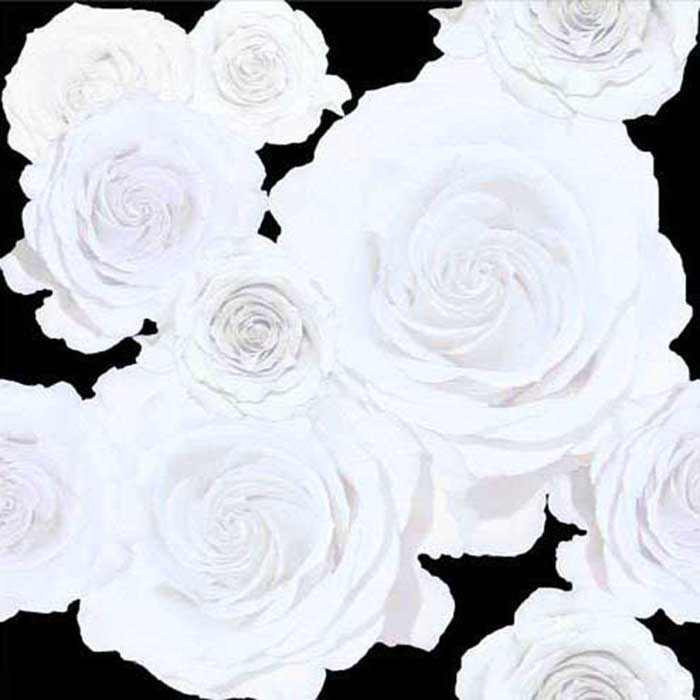 White roses wallpaper brett design inc interior design for Black and white rose wall mural