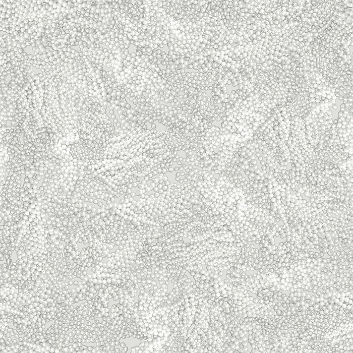 Brett Design Wallpaper Pearls in Cool Gray